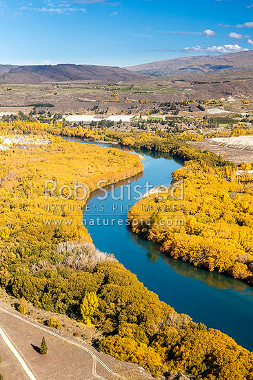 Clutha River Mata-Au winding through orchards and old gold dredgings. Autumn colours, Alexandra, Central Otago District, Otago Region, New Zealand (NZ) stock photo.