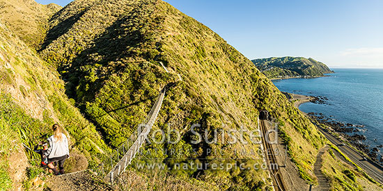 Paekakariki Escarpment Track swingbridge with walkers high above coastline. A walking track linking Paekakariki to Pukerua Bay. Wairaka Point and South Island in distance. Panorama, Pukerua Bay, Kapiti Coast District, Wellington Region, New Zealand (NZ) stock photo.