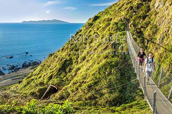 Walkers on Paekakariki Escarpment Track swingbridge, a walking track linking Pukera Bay to Paekakariki. Kapiti Island in distance, Pukerua Bay, Kapiti Coast District, Wellington Region, New Zealand (NZ) stock photo.