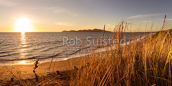 Paekakariki's Whareroa Beach and Kapiti Island at sunset, with woman running dog on beach. Panorama, Paekakariki, Kapiti Coast District, Wellington Region, New Zealand (NZ) stock photo.
