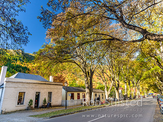 Historic Arrowtown in autumn colours. Heritage Buckingham Street with old houses and building, Arrowtown, Queenstown Lakes District, Otago Region, New Zealand (NZ) stock photo.