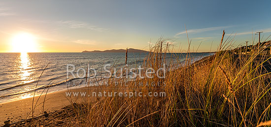 Sunset on Paekakariki's Whareroa Beach, with sand dune grasses in focus. Kapiti Island behind. Panorama, Paekakariki, Kapiti Coast District, Wellington Region, New Zealand (NZ) stock photo.