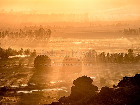 Sunrise over irrigation sprinklers and paddock flooding, Central Otago, near Earnscleugh, Alexandra, Central Otago District, Otago Region, New Zealand (NZ) stock photo.