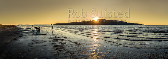 Kapiti Island sunset with local fishermen clearing a drag net for flounders on Paraparaumu Beach. Panorama, Paraparaumu, Kapiti Coast District, Wellington Region, New Zealand (NZ) stock photo.