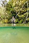 Dry fly trout fishing, Lake Taupo