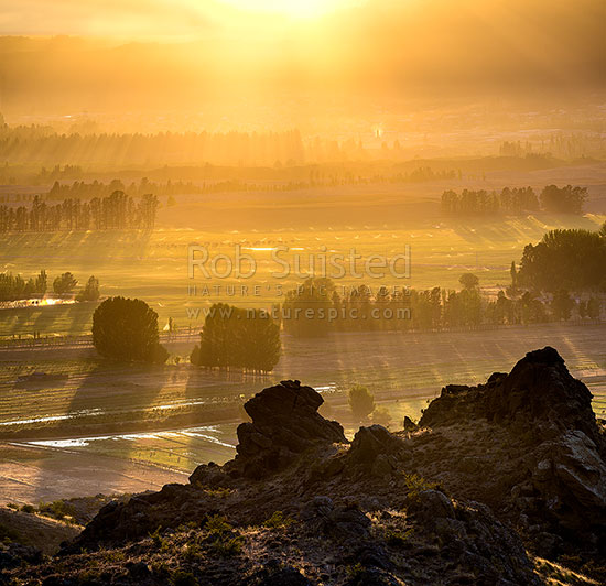 Sunrise over farmland, with irrigation sprinklers and paddock flooding, Central Otago, near Earnscleugh and Blackmans, Alexandra, Central Otago District, Otago Region, New Zealand (NZ) stock photo.