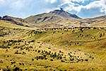 Central Otago hill country