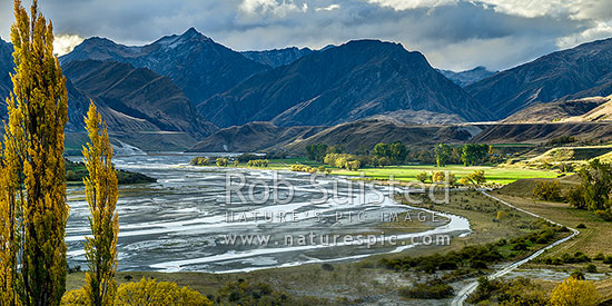 Shotover River and The Branches Station flats lit by sunlight with autumn coloured trees. Mt Greenland (1906m) at left. Panorama, Branches Station, Shotover Valley, Queenstown Lakes District, Otago Region, New Zealand (NZ) stock photo.