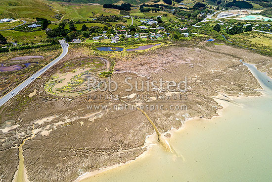 Pauatahanui Wildlife Reserve ponds and saltmarsh on Pauatahanui harbour inlet. Aerial view, Pauatahanui, Porirua City District, Wellington Region, New Zealand (NZ) stock photo.