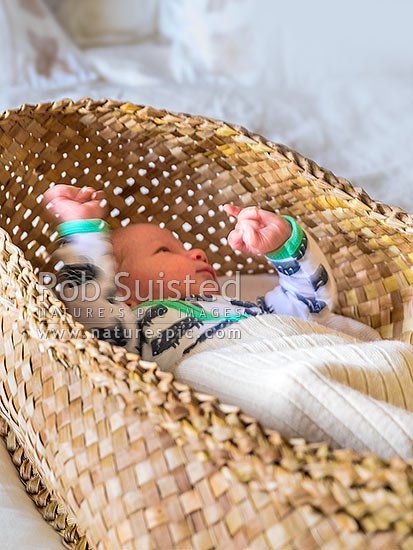 Wahakura, Maori traditionally woven sleeping bassinet for young babies, made from flax (harakeke - Phormium sp.) leaves and fibre, enabling babies to sleep with parents safely, New Zealand (NZ) stock photo.