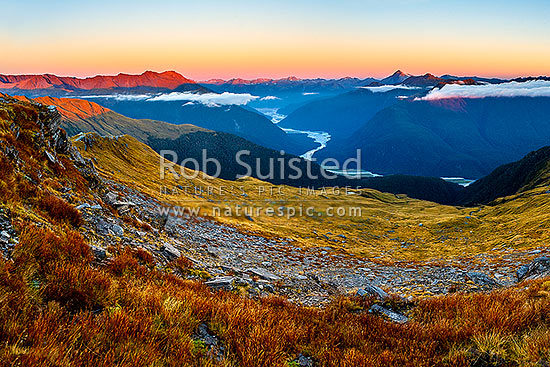 Haast River Valley sunset from the Thomas Range, Crow Creek. Mount Brewster (2515m) centre left, with Haast Range right distance, Haast, Westland District, West Coast Region, New Zealand (NZ) stock photo.