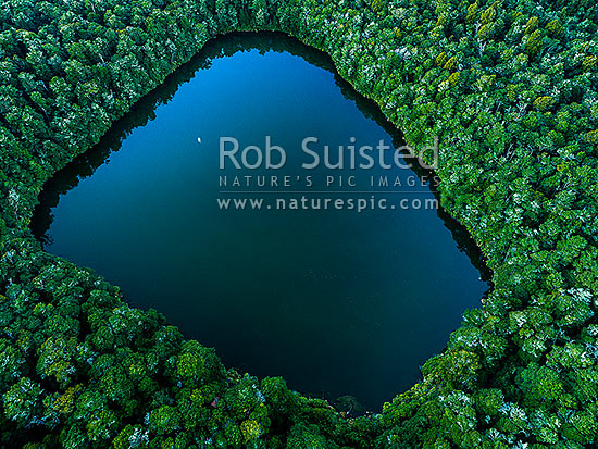 Lake Rotokura Ecological Reserve and beech forest, tapu, or sacred, to Ngati Rangi, on the flanks of Mt Ruapehu. Lake Rotokura, aerial view at dusk, Rangataua, Ruapehu District, Manawatu-Wanganui Region, New Zealand (NZ) stock photo.