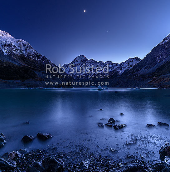 Aoraki / Mount Cook (3754m) above Hooker Lake and Hooker Glacier. Pre-dawn colours, with moon above. Icebergs and bergy bits floating on lake. Square format, Aoraki / Mount Cook National Park, MacKenzie District, Canterbury Region, New Zealand (NZ) stock photo.