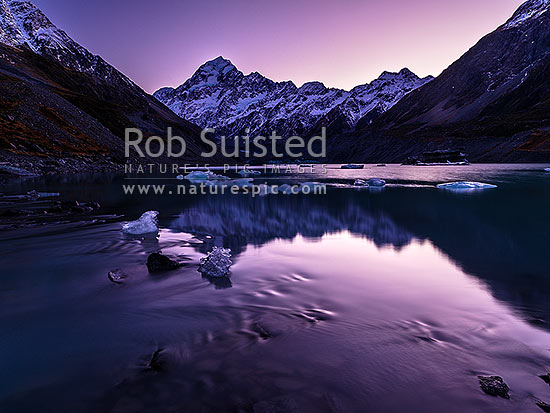 Hooker Lake and Aoraki / Mt Cook (3754m) beyond.  Ice from Hooker Glacier rests in outlet to Hooker River. Pre dawn colours reflected, Aoraki / Mount Cook National Park, MacKenzie District, Canterbury Region, New Zealand (NZ) stock photo.