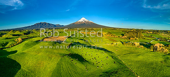 Taranaki lush dairy farmland with Mt Taranaki, Pouakai Range (left), and Egmont National Park behind. Aerial panorama, Rahotu, South Taranaki District, Taranaki Region, New Zealand (NZ) stock photo.