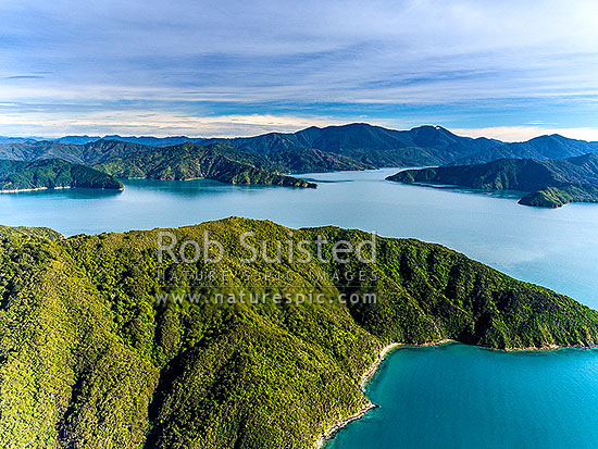 Looking past Blumine Island (Oruawairua) towards Endeavour Inlet and Mt Stokes with snow. Edgecombe Head centre. Queen Charlotte Sounds aerial view, Marlborough Sounds, Marlborough District, Marlborough Region, New Zealand (NZ) stock photo.