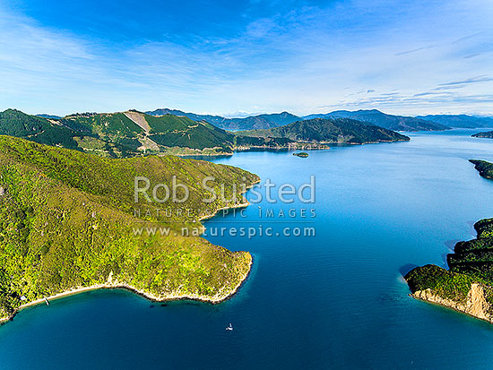 Queen Charlotte Sound, looking through Patten Passage between Arapawa Island and Blumine Island (right). Amerikiwhati Island centre. Aerial view, Marlborough Sounds, Marlborough District, Marlborough Region, New Zealand (NZ) stock photo.