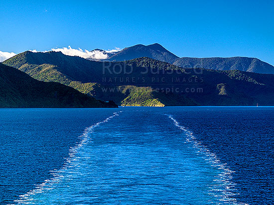 Ship wake in Queen Charlotte Sound, from the interislander ferry.  Golden Point centre, Marlborough Sounds, Marlborough District, Marlborough Region, New Zealand (NZ) stock photo.