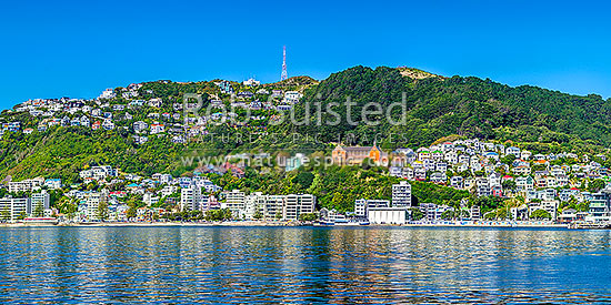Wellington City panorama of Oriental Bay, with villas perched on slopes of Mt Victoria. St Gerards Monastry centre right. Iconic view of well known Welligton suburb, Wellington Harbour, Wellington City District, Wellington Region, New Zealand (NZ) stock photo.