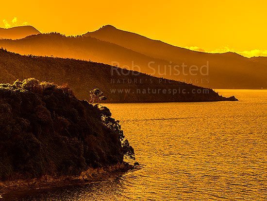 Queen Charlotte Sound evening sunset. Looking past Mabel Island to Wedge Point, with Mt Te Mahia (416m) above (centre). Near Picton, Marlborough Sounds, Marlborough District, Marlborough Region, New Zealand (NZ) stock photo.