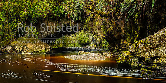 Oparara Arch. The Oparara River entering the little Oparara arch (Moria Gate). Clean, dark vegetation and tanin stained water moving slowly under the limestone arch. Panorama, Karamea,Kahurangi National Park, Buller District, West Coast Region, New Zealand (NZ) stock photo.