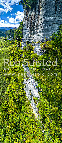 Bullock Creek valley in Paparoa National Park, with high limetone cliffs, karst geology, and the Bullock Creek polje prominent. Aerial view, Paparoa National Park, Buller District, West Coast Region, New Zealand (NZ) stock photo.