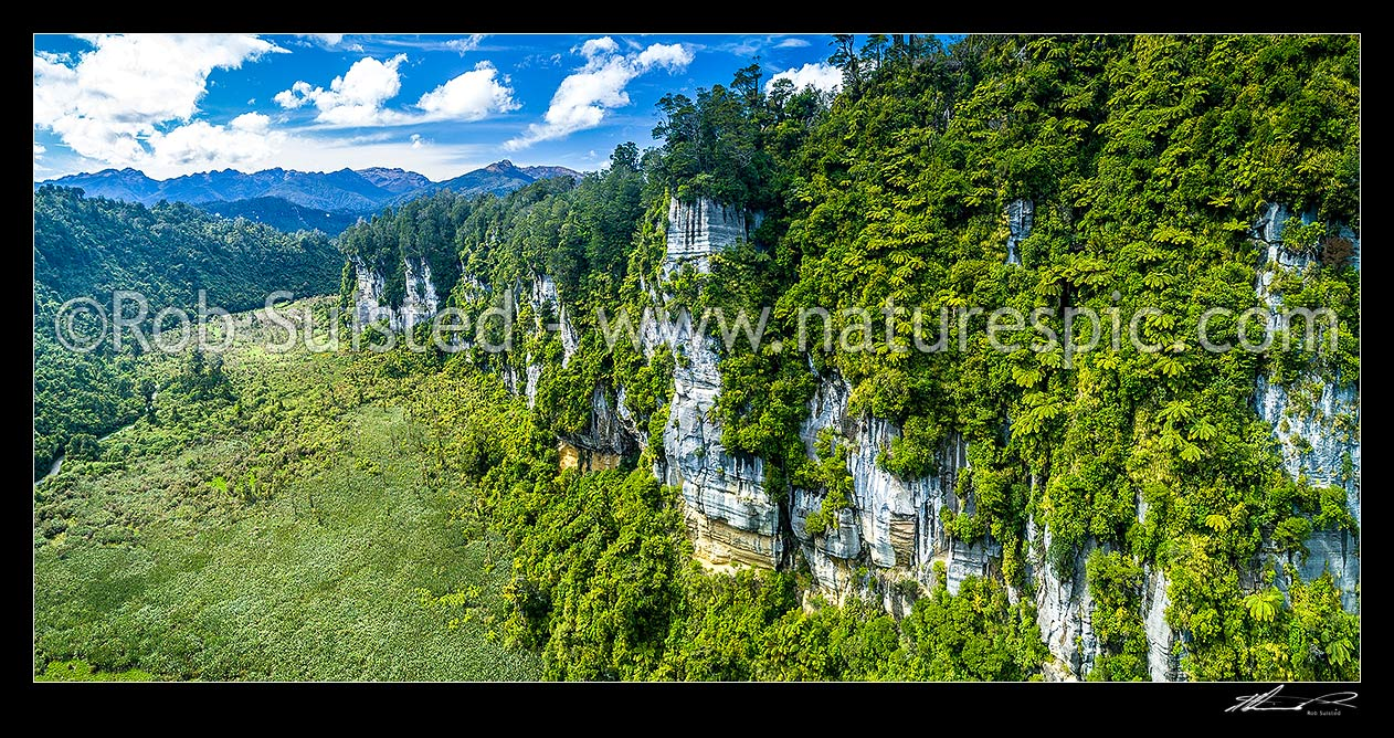 Image of Bullock Creek valley in Paparoa National Park, with high limetone cliffs, karst geology, and the Bullock Creek polje prominent. Aerial panorama, Paparoa National Park, Buller District, West Coast Region, New Zealand (NZ) stock photo image
