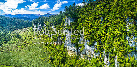 Bullock Creek valley in Paparoa National Park, with high limetone cliffs, karst geology, and the Bullock Creek polje prominent. Aerial panorama, Paparoa National Park, Buller District, West Coast Region, New Zealand (NZ) stock photo.