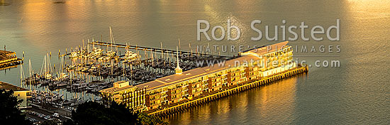 Clyde Quay Wharf and Chaffers Marina glowing golden in early morning sunlight, on Oriental Bay, Wellington and Lambton Harbour. Panorama, Wellington, Wellington City District, Wellington Region, New Zealand (NZ) stock photo.
