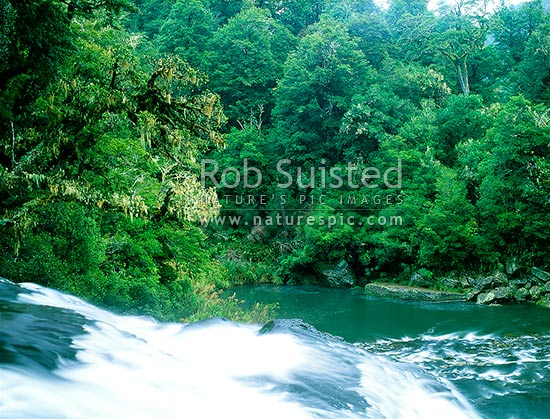 Aniwaniwa River at the top of Te Tangi o Hinerau Falls, waikaremoana, Te Urewera National Park, Wairoa District, Hawke's Bay Region, New Zealand (NZ) stock photo.