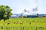 Farm waste burning, plastic wrapping