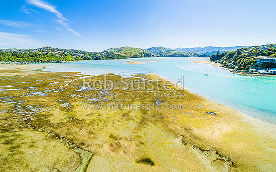 Pauatahanui Inlet (Arm) of Porirua Harbour at low tide showing mud flats. Aerial view with Moorhouse Point and Ivey Bay right, and Camborne left. Seen from Paremata, Pauatahanui Inlet, Porirua City District, Wellington Region, New Zealand (NZ) stock photo.