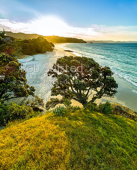 Otama Beach sunset, looking along Otama Beach to Motuhua Point, Otama Beach, Coromandel Peninsula, Thames-Coromandel District, Waikato Region, New Zealand (NZ) stock photo.
