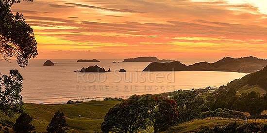 Opito Bay and Beach sunrise panorama. Opito Point, Historic Reserve and Rabbit Island centre, with Ohinau and Ohinauiti Islands behind, Opito Bay, Coromandel Peninsula, Thames-Coromandel District, Waikato Region, New Zealand (NZ) stock photo.
