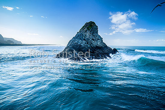 Panatahi Island offshore of Karekare Point. Whatipu behind. Aerial view at dawn, Karekare Beach, Waitakere City District, Auckland Region, New Zealand (NZ) stock photo.