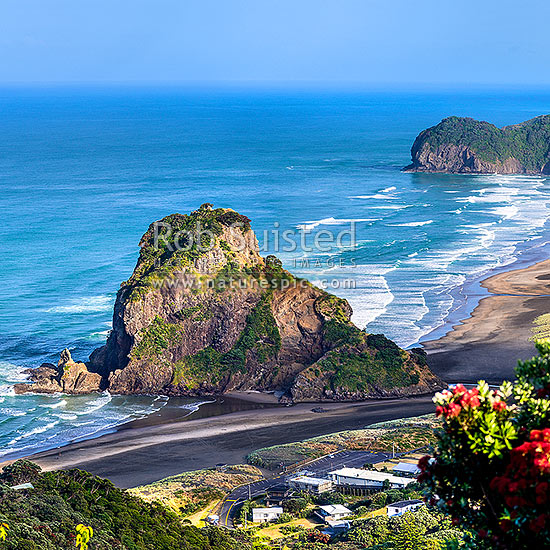 Piha Beach And Iconic Lion Rock With