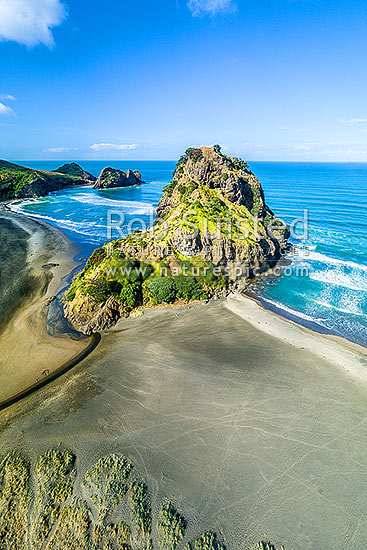 Piha Beach with people climbing Lion Rock walkway. Taitomo Island and Kaiwhare Point beyond. West Auckland, Waitakeres, Piha Beach, Waitakere City District, Auckland Region, New Zealand (NZ) stock photo.