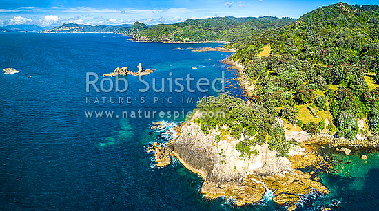 Coromandel coast, Matapaua Bay, looking towards Mercury Bay past flowering pohutukawa trees (Metrosideros excelsa). Aerial view, Matapaua Bay, Coromandel Peninsula, Thames-Coromandel District, Waikato Region, New Zealand (NZ) stock photo.