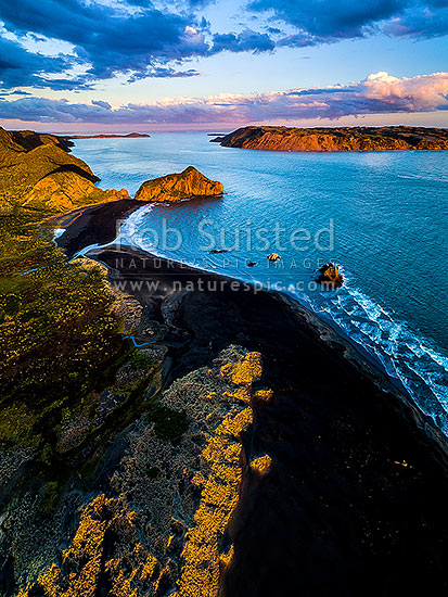 Manukau Harbour entrance at Whatipu Beach, with Paratutae Island centre left. Niepin Rock centre right, South Head and Awhitu beyond. Aerial view at dusk, Whatipu Beach, Waitakere City District, Auckland Region, New Zealand (NZ) stock photo.