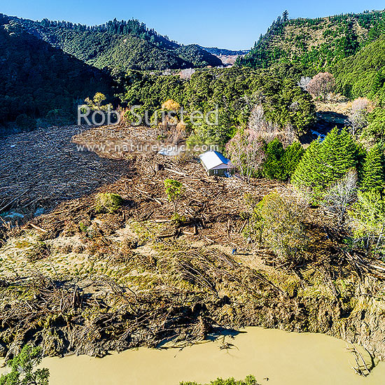 Tolaga Bay floods in June 2018 brought large amounts of forestry timber slash down Mangatokerau River, smashing Amber Kopua's 100 yr old house 30m off piles. Aerial view, note people for scale. Square format, Tolaga Bay, Gisborne District, Gisborne Region, New Zealand (NZ) stock photo.