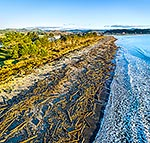 Tolaga Bay forestry floods 2018