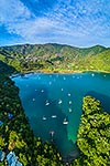 Ngakuta Bay, Grove Arm, Marlb. Sds, Picton