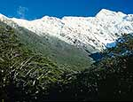 Mt Rolleston, Arthur's Pass