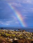 Turakirae Head rainbow, Wellington Coast