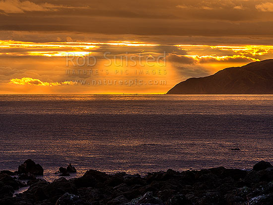 Sinclair Head on Wellington South Coast, with crepuscular rays at sunset over Karori Rock lighthouse. Cook Strait at left. Seen from Turakirae Head, Turakirae Head, Hutt City District, Wellington Region, New Zealand (NZ) stock photo.