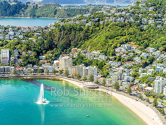 Oriental Bay and Roseneath suburbs under Mt Victoria. Sunny day with Carter Fountain playing by the Band Rotunda. Aerial view, Wellington, Wellington City District, Wellington Region, New Zealand (NZ) stock photo.