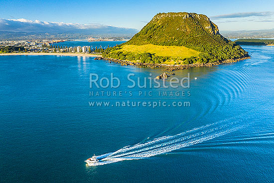 Mt Maunganui Mauao, a 231m lava dome at Tauranga Harbour entrance, with a big game fishing boat leaving harbour mouth. Aerial view, Mount Maunganui, Tauranga District, Bay of Plenty Region, New Zealand (NZ) stock photo.