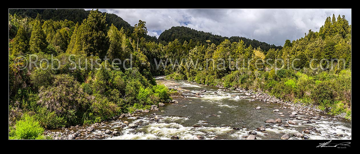 Image of Whakapapa River in the Tongariro Conservation Area. Tongariro Forest. Panorama, Owhanga, Ruapehu District, Manawatu-Wanganui Region, New Zealand (NZ) stock photo image