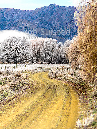 Heavy frost, or hoar frost, amongst riverflats, farmland road and trees near Omarama, Omarama, Waitaki District, Canterbury Region, New Zealand (NZ) stock photo.