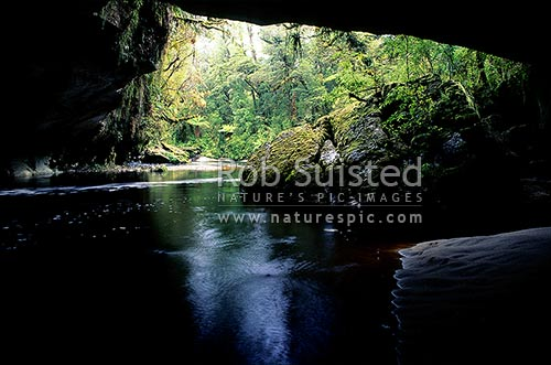 Looking through the little Oparara limestone arch, Oparara River, Karamea, Kahurangi National Park, Buller District, West Coast Region, New Zealand (NZ) stock photo.
